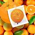 Comenta-se que Robério lançará candidaturas laranjas na tentativa de enfraquecer Cordélia