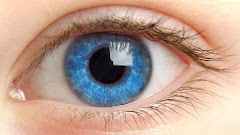 7 Tips to treat your eyes right