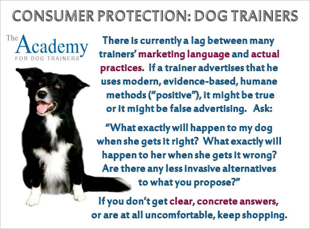 Three questions to ask dog trainers for consumer protection