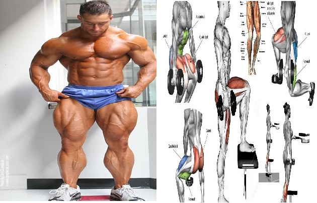 Best 4 Dumbbell Exercises For Legs