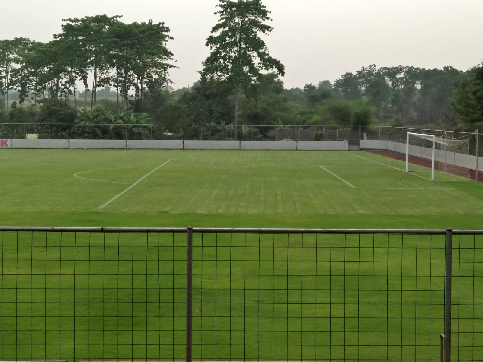 Jual Bibit Rumput Lapangan Sepak Bola Internasional Agen Biji Tanaman Hias Kami Adalah Supplier Berbagai Macam Atau Benih Rumputsalah Satunya Untuk