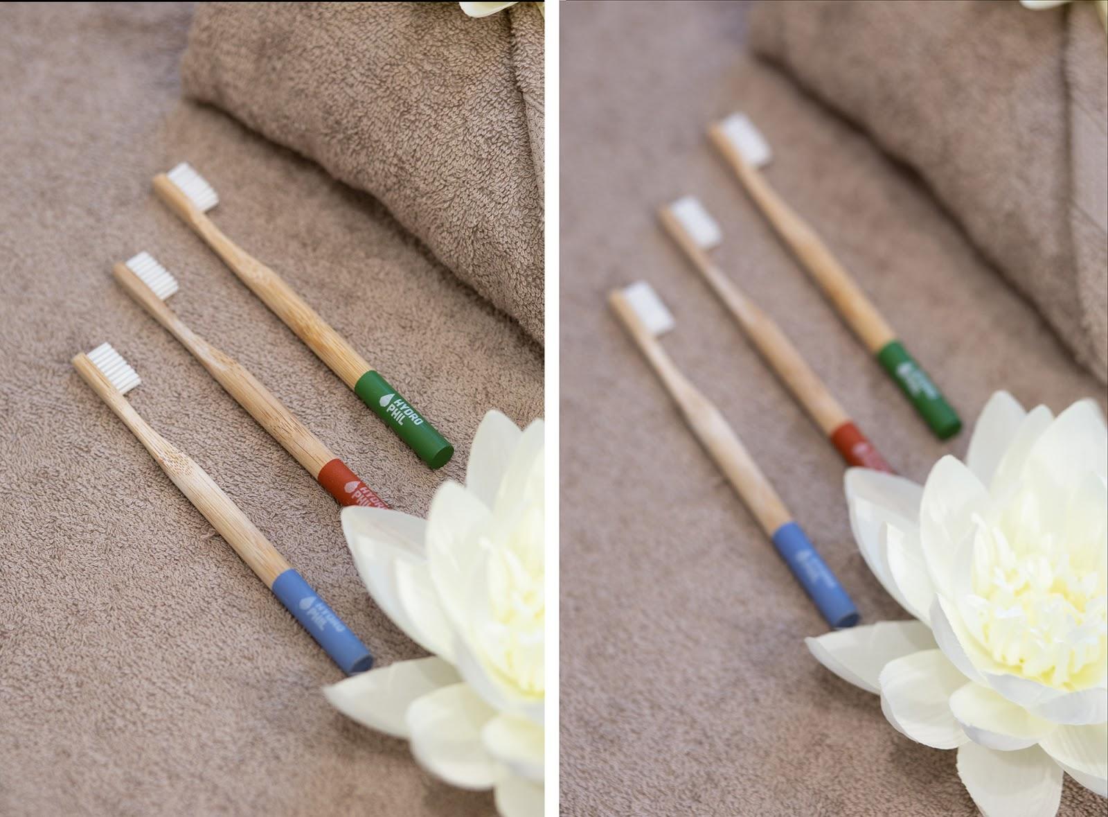 brosse à dents en bambou écologique hydrophil