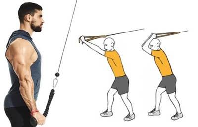 Dos ejercicios de triceps para agrandar los brazos