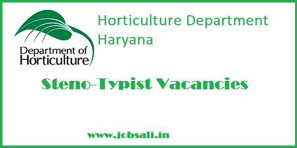 stenographer jobs in Haryana,