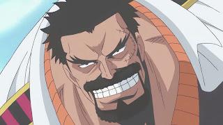 "10 Pemilik Nama Inisial ""D"" di Anime One Piece"