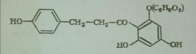الفلوريدزين Phloridzin
