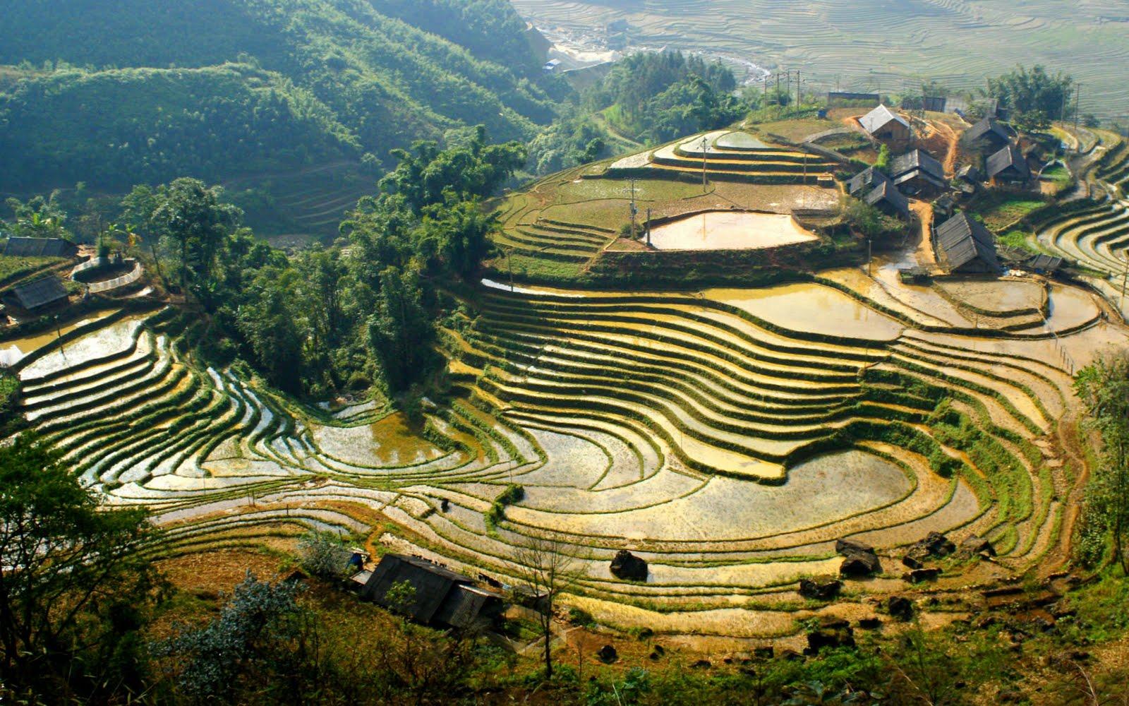 Resultado de imagen de sapa vietnam