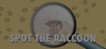 spot the raccoon version 2 quiz answers 100% score