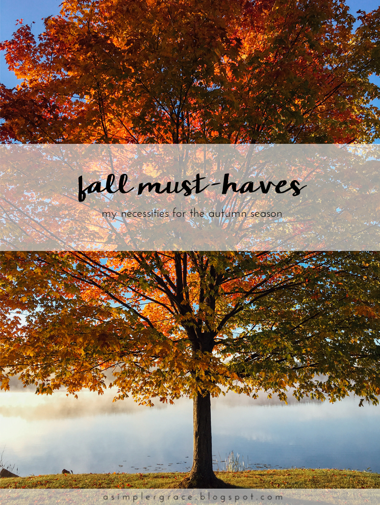 Fall Must-Haves | Blog-tember Day 22 #blogtemberchallenge