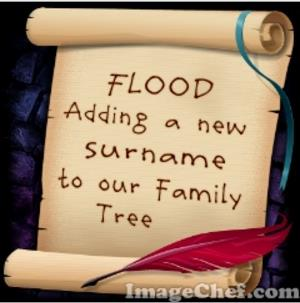 Flood surname; http://blackravengenealogy.blogspot.ie