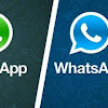 Download Whatsapp Plus Gratis Versi Terbaru 2019