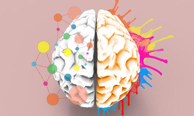 كيف تطلق العنان لأنواع الإبداع الأربعة لديك