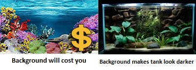 Cons of aquarium background