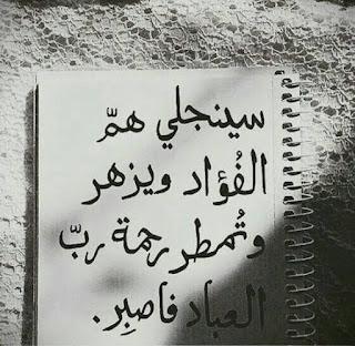 صور اسلاميه