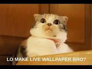 Live wallpaper memperlambat HP