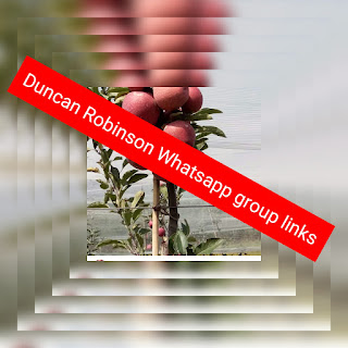 Duncan Robinson whatsapp group links