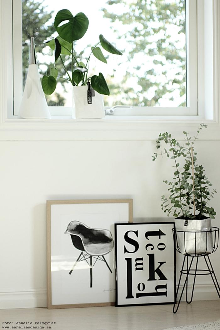 blomsterställning, blomsterhållare, tavla, tavlor, konsttryck, poster, posters, print, stockholm, grafiska, komatta, matta, kohud, ko, kossa, brasiliansk, natures collection, annelies design, webbutik, webshop, nätbutik, nettbutikk, skinn, svart och vitt,