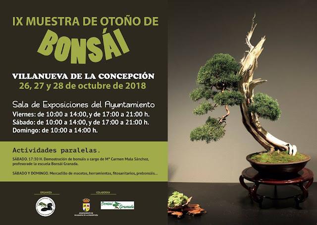 IX Muestra de Otoño de Bonsái de Villanueva de la Concepción