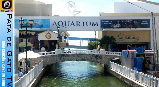 Aquário Interativo de Cancun
