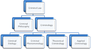 Criminology definition