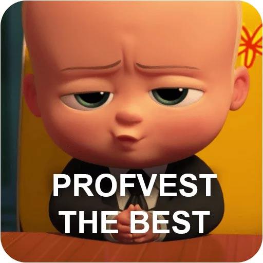 PROFVEST the best