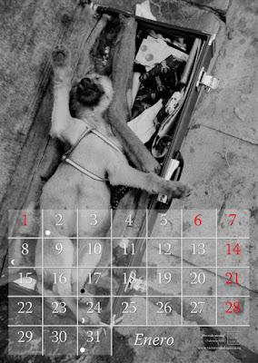 animales,perro,calendario,2018,foto,arte