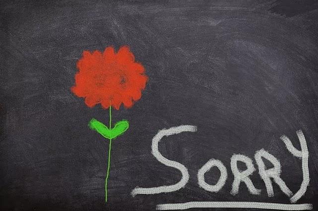 i am really sorry dear