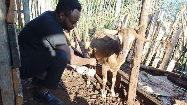 2020 is an year of abundance for smallholder farmers in Kenya. Smallholder farmers may be poor, but they live a quality life.