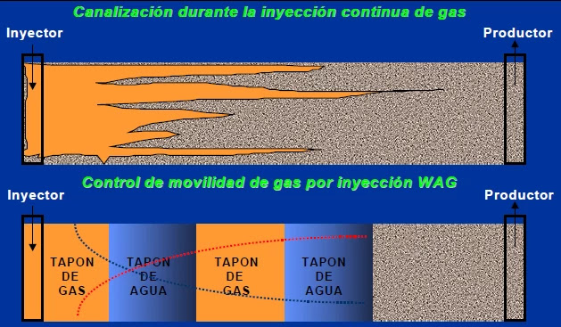 Efecto del AGA en el control de Movilidad (M).