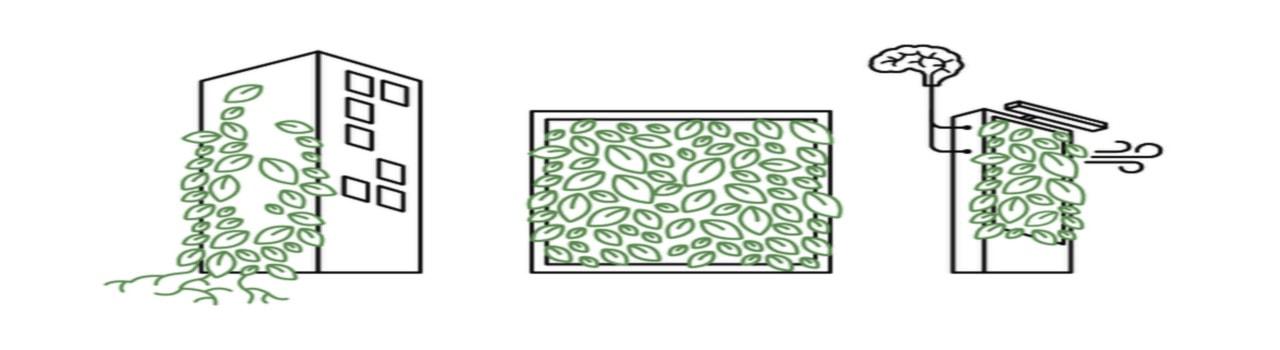 muros verdes enredaderas