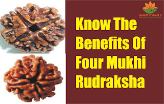 Know The Benefits of Four Mukhi Rudraksha