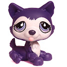 Littlest Pet Shop Multi Pack Husky (#900) Pet