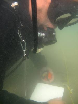 """""""Lelet"""" felmérési gyakorlat a Dorogi-tóban"""
