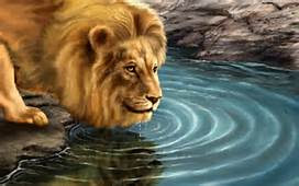 Lion HD Wallpapers, Free Download Lion Desktop Pictures, Full HD