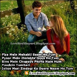 Boy Girl Couple Romantic Shayari In Hindi For Girlfriend