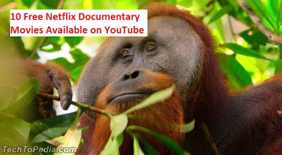 10 Free Netflix Documentary Movies Available on YouTube
