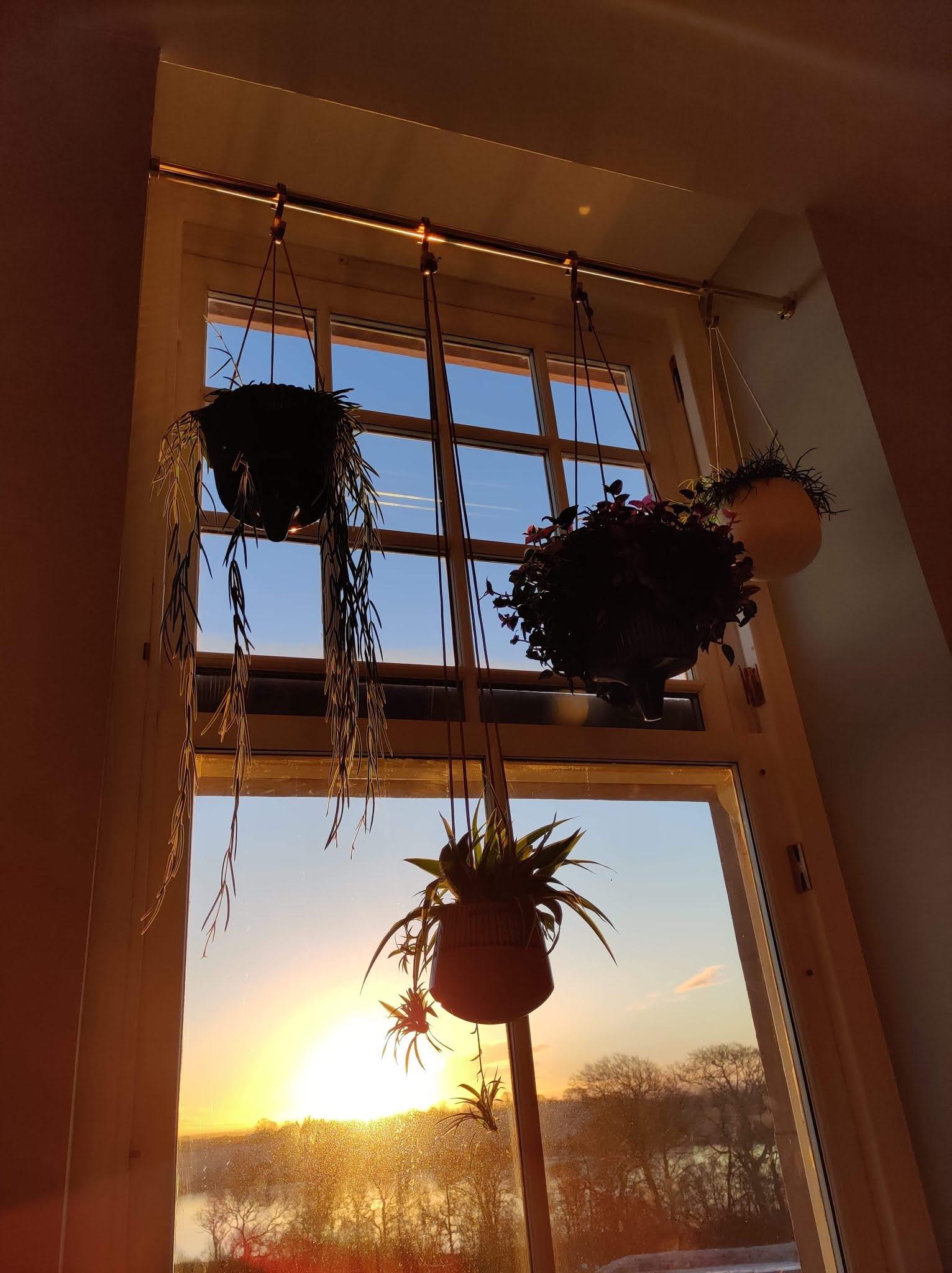 how to indoor hanging plant rail diy kitchen liquid grain liquidgrain