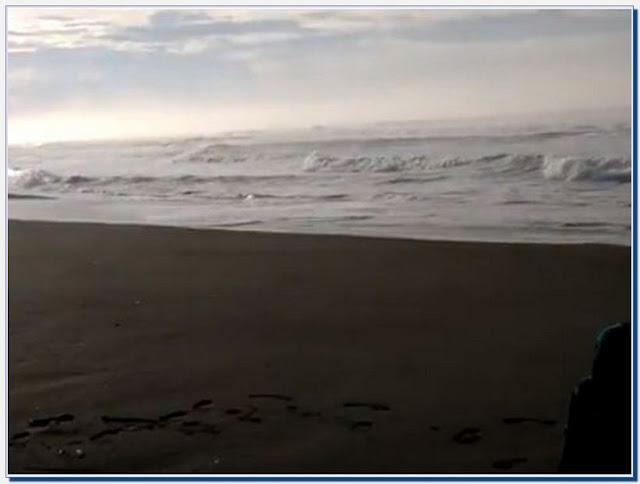 Wisata Pantai Pagak Ngombol Purworejo