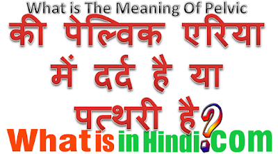 What is the meaning of Pelvic in Hindi