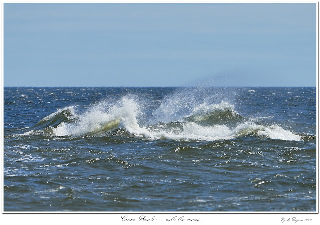 Crane Beach: ... with the waves...