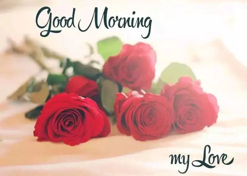 Romantic Good Morning Flowers for Husband