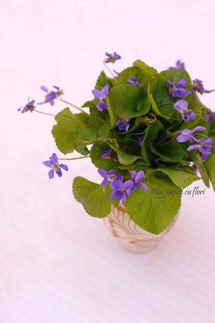 buchet de toporasi flori de primavara