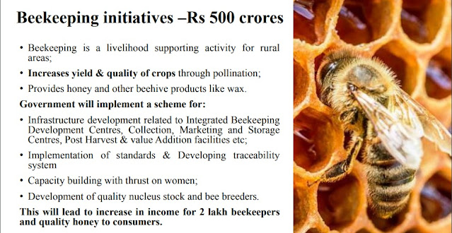 Fund-for-Beekeeping