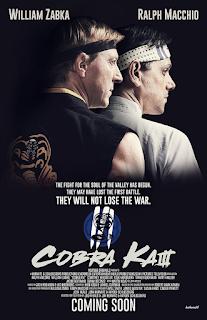 Cobra Kai Temporada 3 audio español