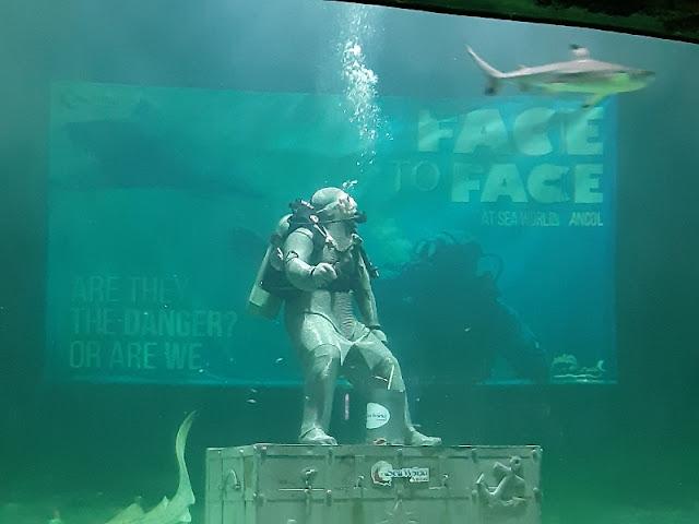 Live Feeding Shark: Face to Face di Seaworld Ancol
