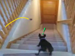 escadas entre andares