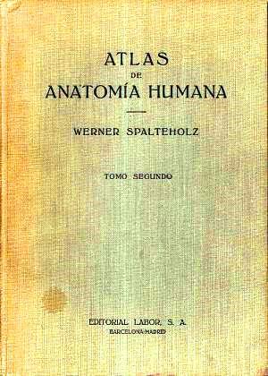 Atlas de anatomía humana, Tomo II: Regiones, músculos, aponeurosis, corazón y vasos sanguíneos – Werner Spalteholz