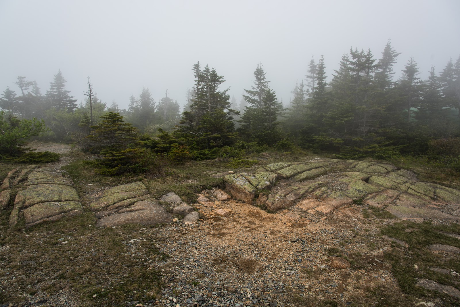 The Highest Point of Cadillac Mountain, Accessed via Cadillac North  Ridge Trail (Image ©2015 Ben Sullivan)