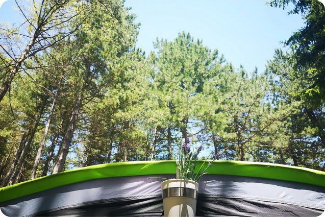 Carpegna camping Cippo