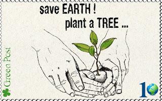 Essay on plant treee